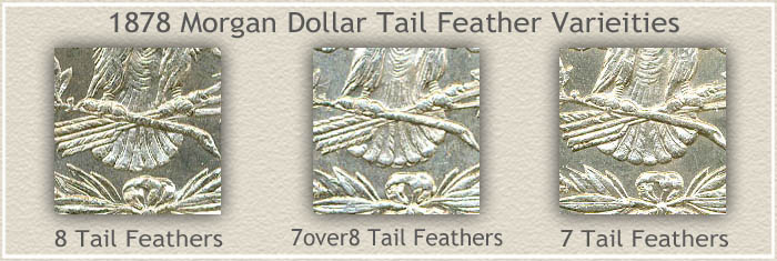 Tail Feather Varieties of 1878 Morgan Silver Dollars