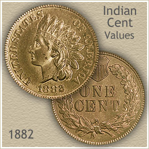 1882 Indian Head Penny Value Discover Their Worth,Pictures Of Ribs On The Grill