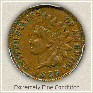 1886 Indian Head Penny Extremely Fine Condition