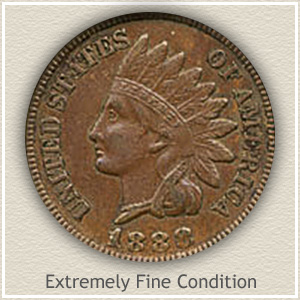 1888 Indian Head Penny Extremely Fine Condition