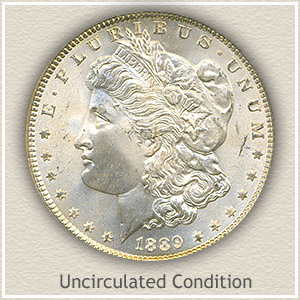 1889 Morgan Silver Dollar Uncirculated Condition