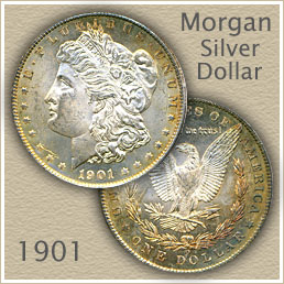 Uncirculated 1901 Morgan Silver Dollar Value