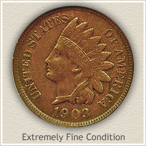 1903 Indian Head Penny Extremely Fine Condition