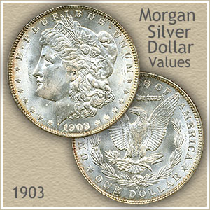 Uncirculated 1903 Morgan Silver Dollar Value