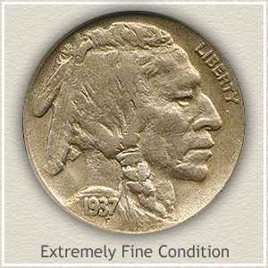 1937 Nickel Extremely Fine Condition