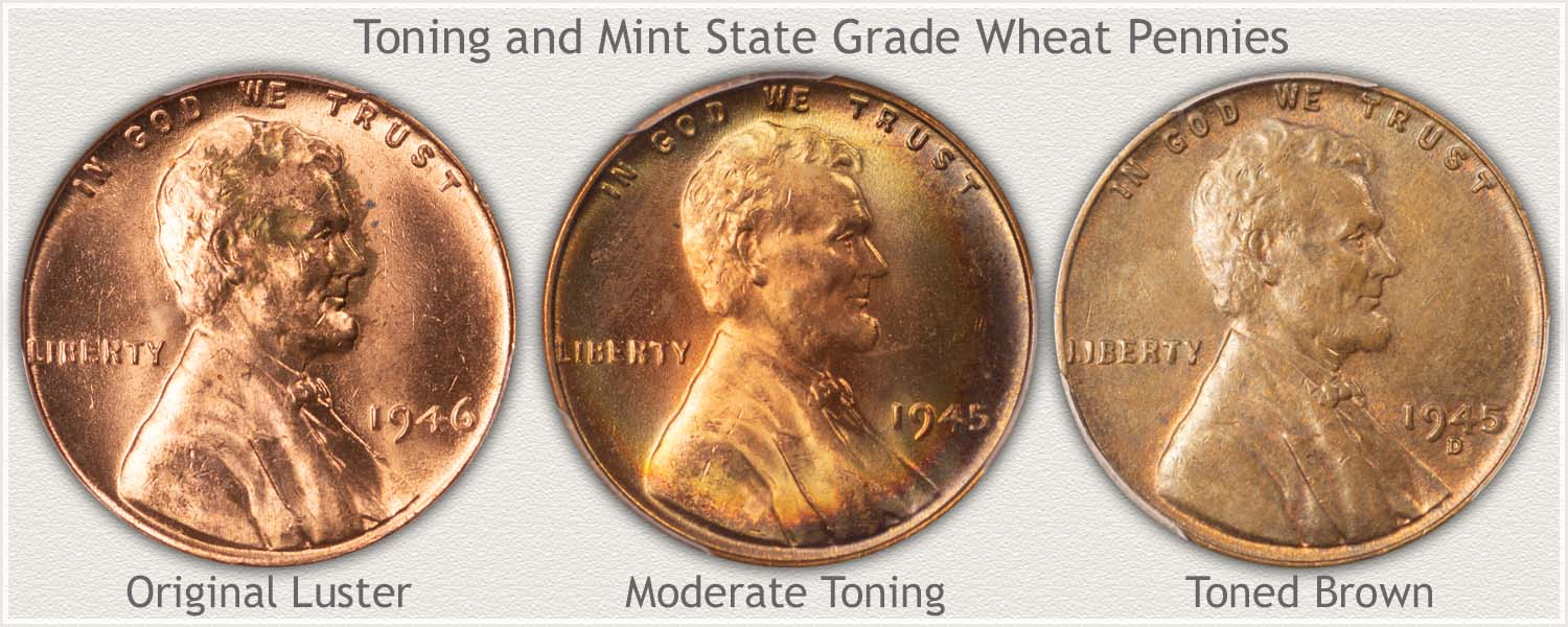 Progression of Toning Wheat Pennies