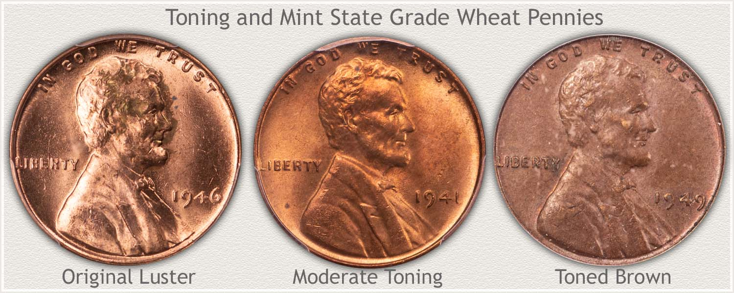 Three Wheat Cents: Untoned | Moderate Toning | Toned Brown