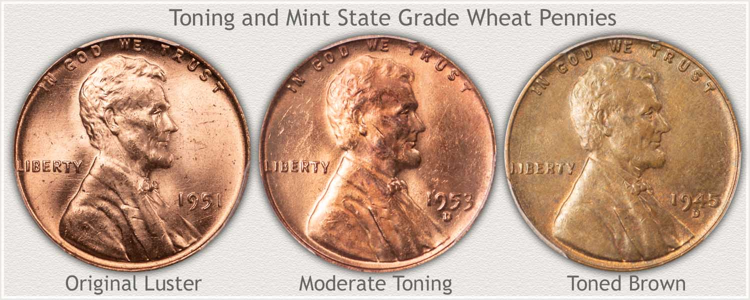 Progression of Toning Colors to Wheat Pennies