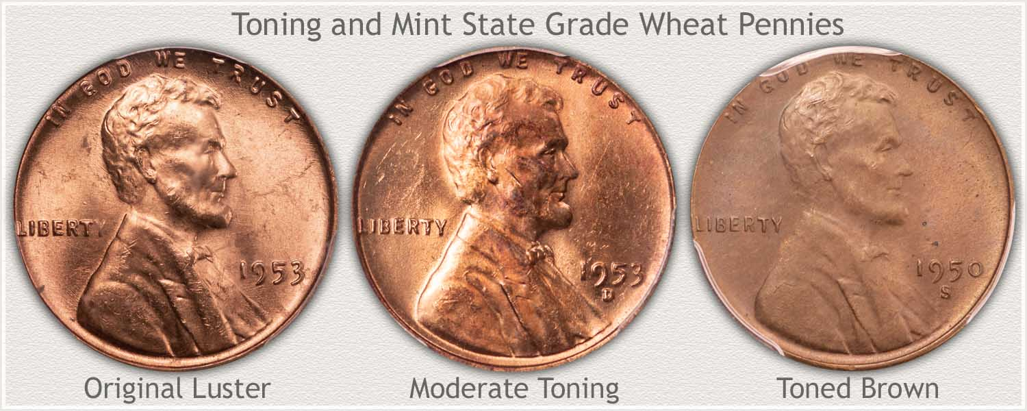 Toning Progression of Three Wheat Pennies