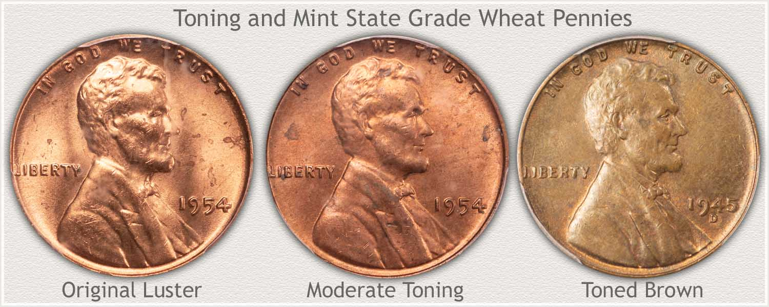 Uncirculated Wheat Pennies in Stages of Toning