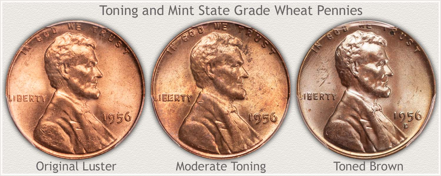 Toning Examples of 1956 Wheat Pennies
