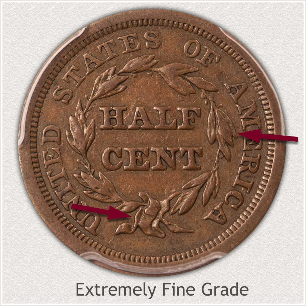 Reverse View: Extremely Fine Grade Braided Hair Half Cent