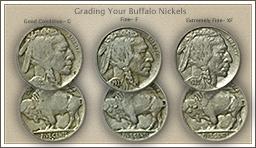 Visit...  Video | Grading Buffalo Nickels