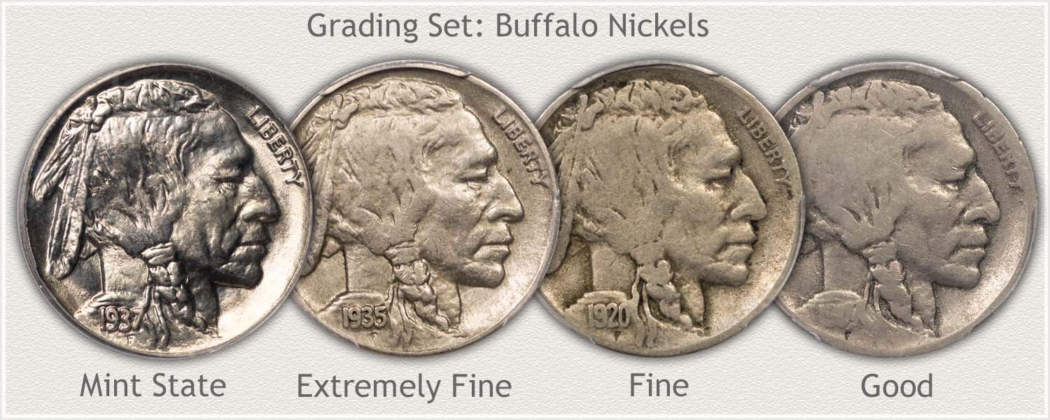 Buffalo Nickel Value Discover Their Worth