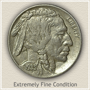 Buffalo Nickel Extremely Fine Condition