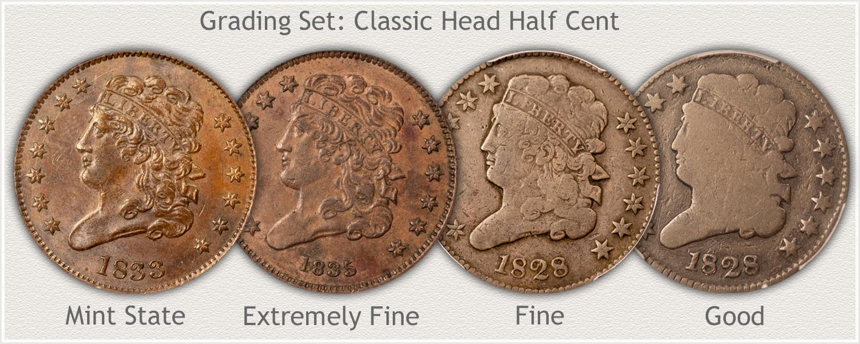 Grading Set of Classic Head Half Cents