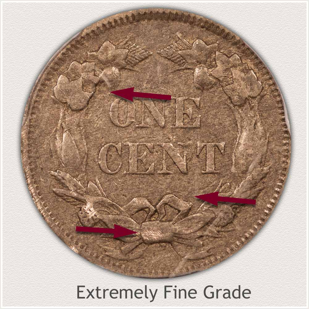 Reverse View: Extremely Fine Grade Flying Eagle Penny