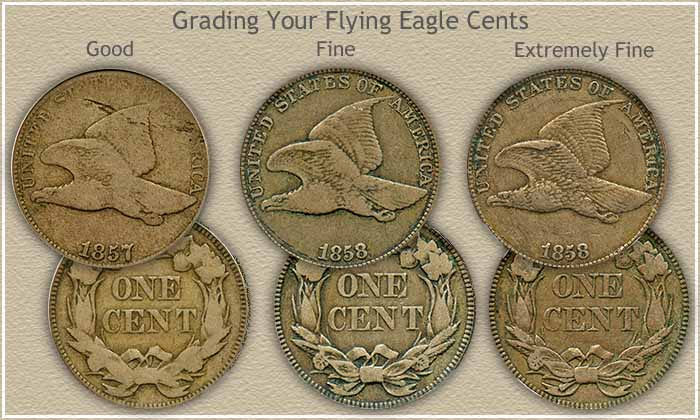 Grading Your Flying Eagle Penny