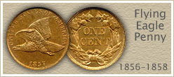 Discover...  Flying Eagle Penny Values