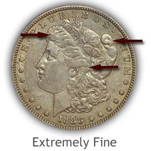 Grading Obverse Extremely Fine Morgan Silver Dollars