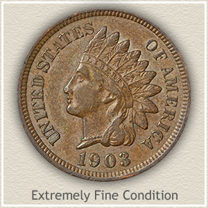 Indian Head Penny Extremely Fine Condition