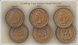 Visit...  Video | Grading Indian Head Pennies