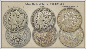 Visit...  Video | Grading Morgan Silver Dollars