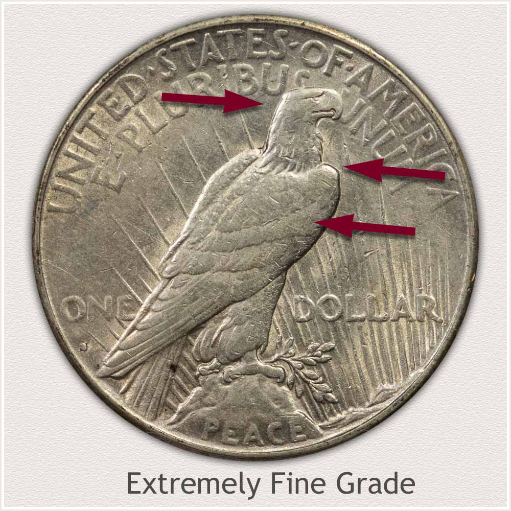 Reverse View: Extremely Fine Grade Peace Dollar