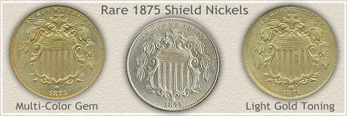 Rare 1875 Nickel Value