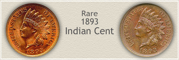 Rare 1893 Indian Pennies