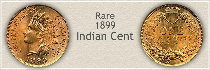 Rare 1899 Indian Penny