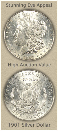 Rare 1901 Morgan Silver Dollar