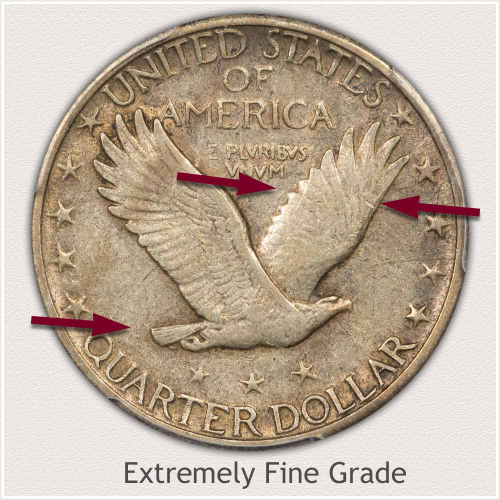 Reverse View: Extremely Fine Grade Standing Liberty Quarter