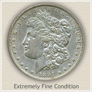 1891 Morgan Silver Dollar Extremely Fine Condition