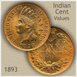 Uncirculated 1893 Indian Head Penny