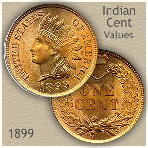 Uncirculated 1899 Indian Head Penny