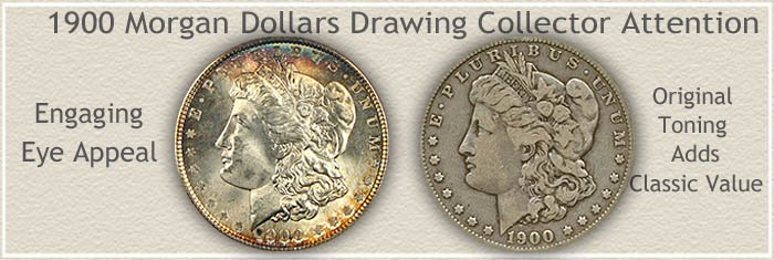Rare Toned 1900 Morgan Silver Dollars