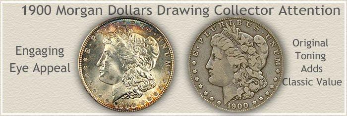 Rare Toned 1900 Morgan Silver Dollars