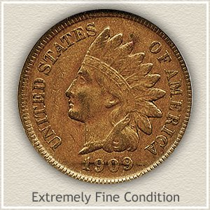 1909 Indian Head Penny Extremely Fine Condition