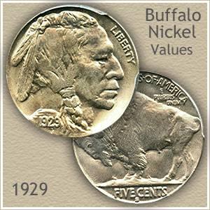1929 Nickel Value | Discover Your Buffalo Nickel Worth
