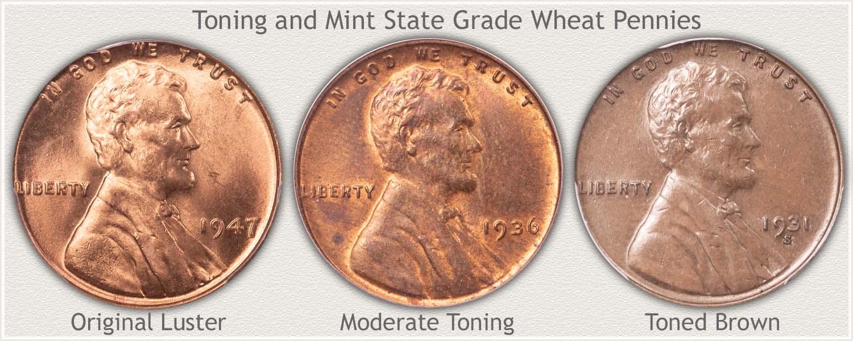 Shades of Toning on Three Wheat Pennies