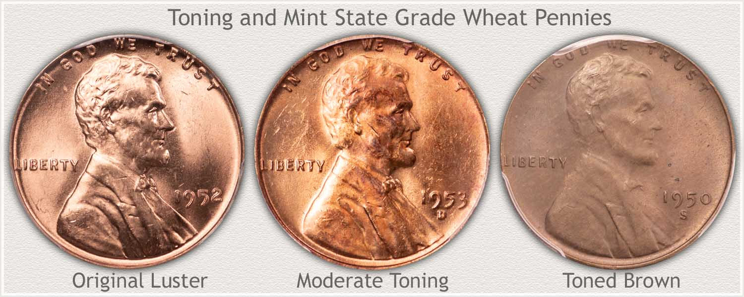 Shades of Toning on Three Wheat Pennies