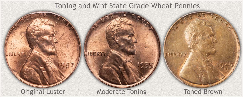 Shades of Toning on Three Wheat Cents