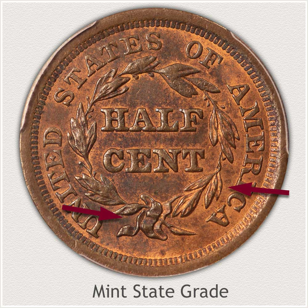 Reverse View: Mint State Grade Braided Hair Half Cent