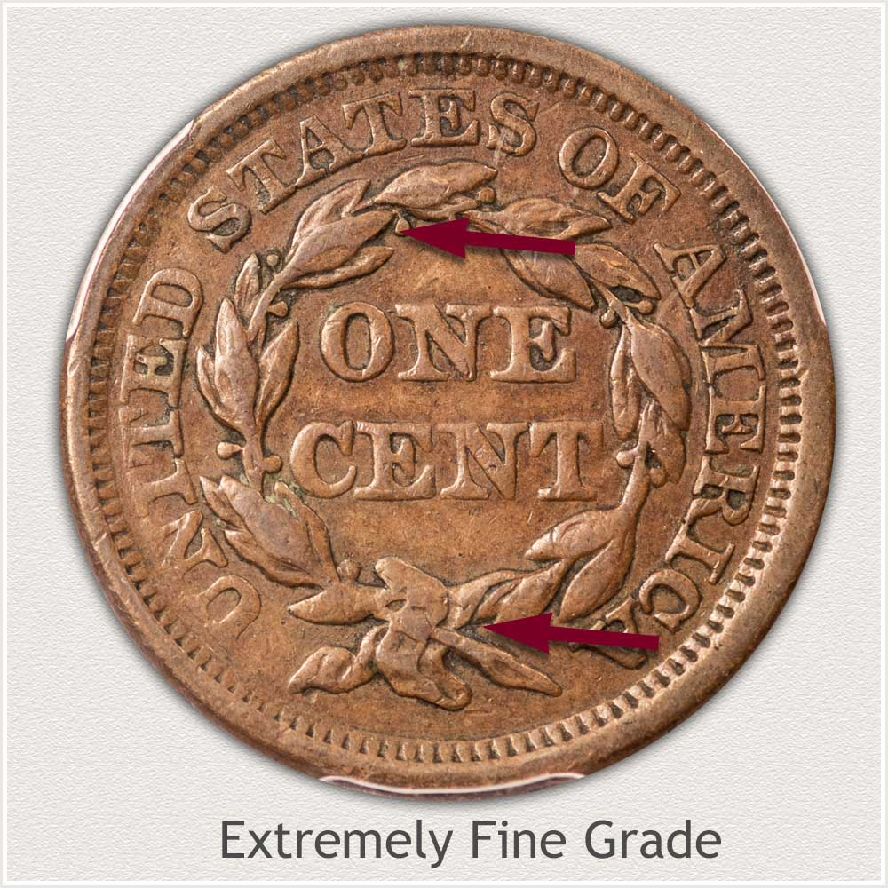 Reverse View: Braided Hair Large Cent Extremely Fine Grade