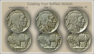 Visit...  Video | Grading Buffalo Nickels