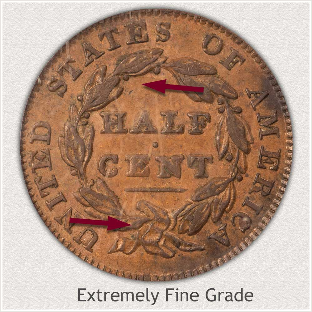 Reverse View: Extremely Fine Grade Classic Head Half Cent