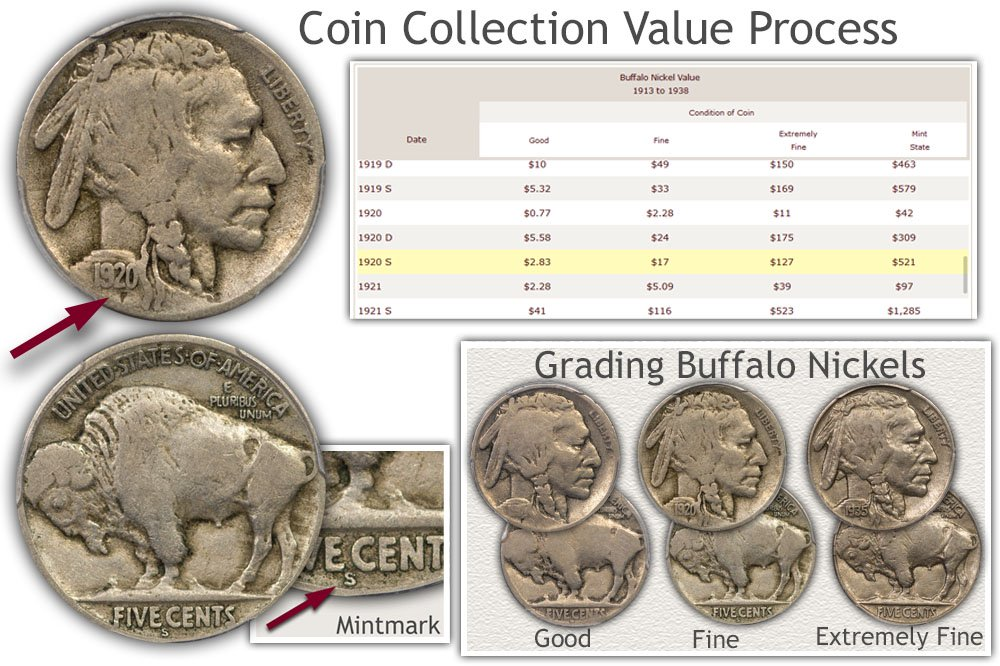 Infographic of the Coin Collection Value Process