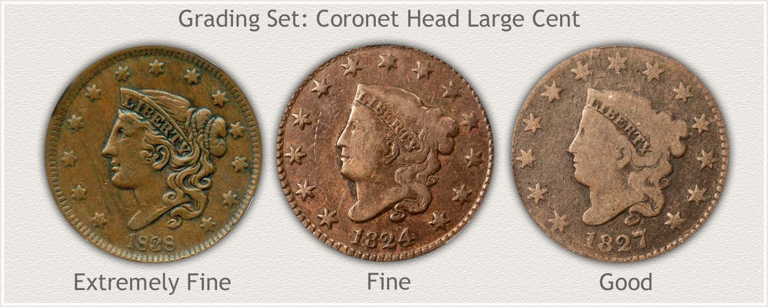 Grading Set of Coronet Head Large Cents