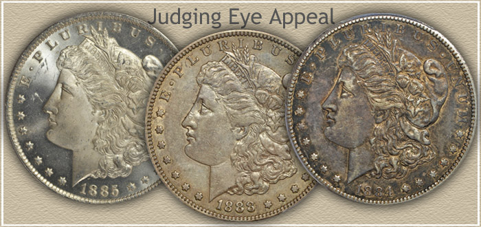 Judging Eye Appeal Morgan Silver Dollar